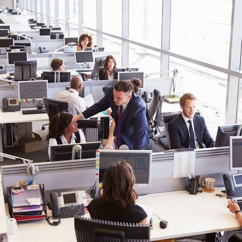 Workspace Environment